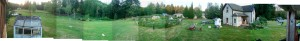 Backyard panorama.