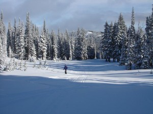 New ski run at White Pass.